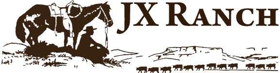 JX Ranch Natural Beef